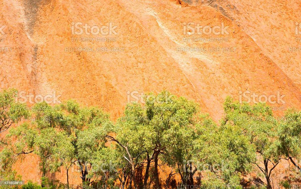 Uluru & Trees royalty-free stock photo