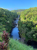 Not one, not two, but three waterfalls await you at Umauma Falls where the river plummets off multiple lava stone steps into calm pools below. An overlook provides a perfect view of the falls framed by a dense cluster of wild guava trees and sugarcane—certainly a lovely sight to behold.