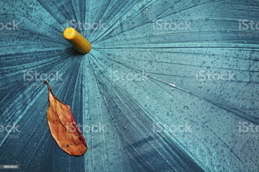 Umbrella and yellow leaf royalty-free stock photo