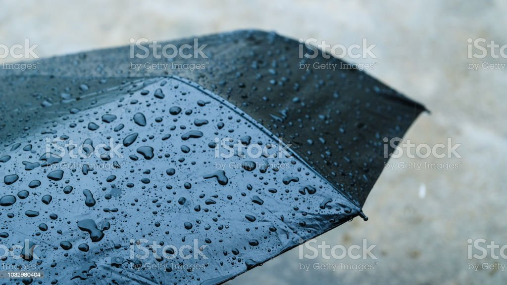 Umbrella in the rain