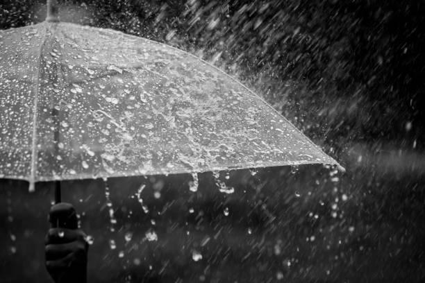 umbrella in the rain - umbrellas stock photos and pictures