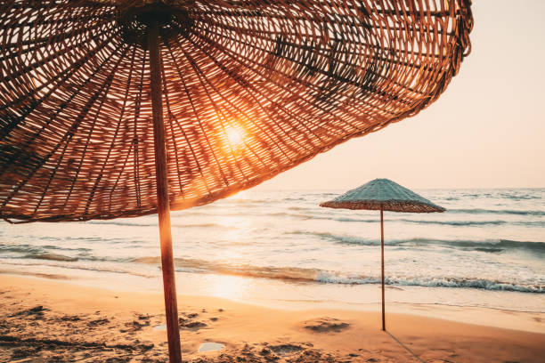 Umbrella On Sandy Beach. Sun Sunshine Through Wicker Umbrella At Summer Sunrise Sunset stock photo
