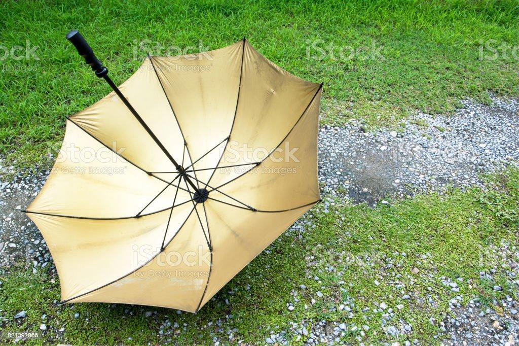 Umbrella upside down on grass background.Gold umbrella upside down