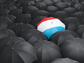 Umbrella with flag of luxembourg over black umbrellas