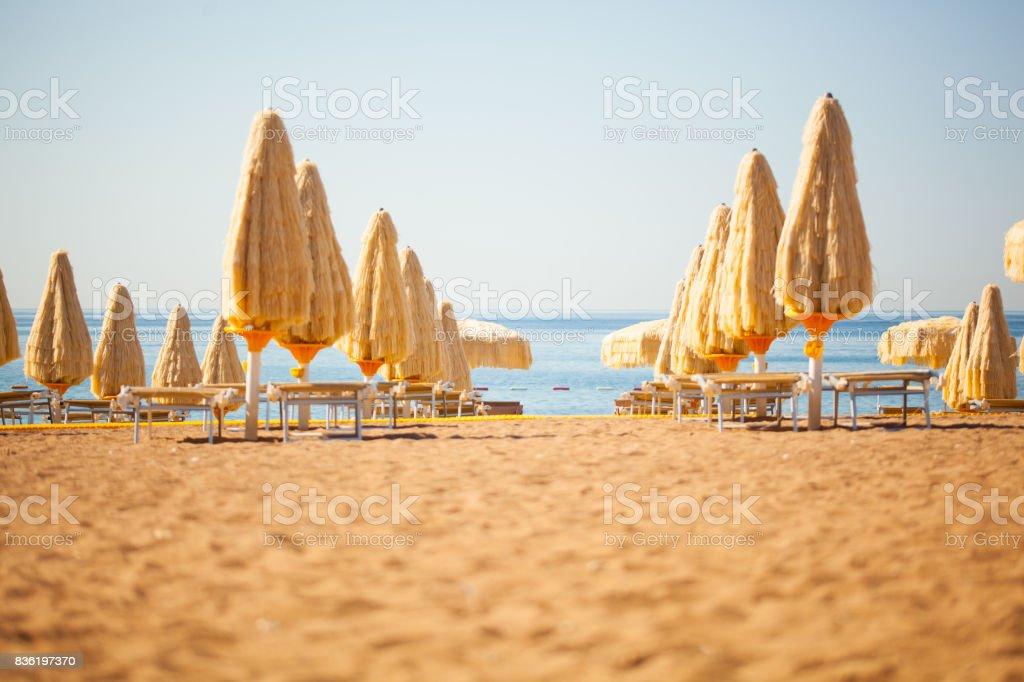 Umbrellas at beach stock photo