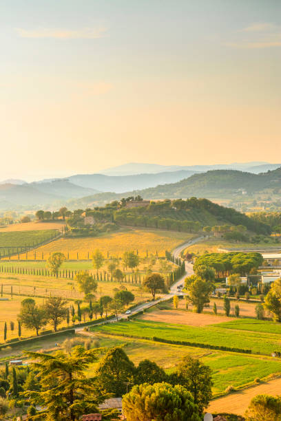 Umbria hills in late afternoon. Rolling hills at sunset in Umbria, Italy. umbria stock pictures, royalty-free photos & images