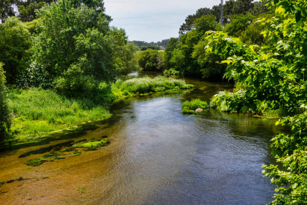 Umia river bed stock photo