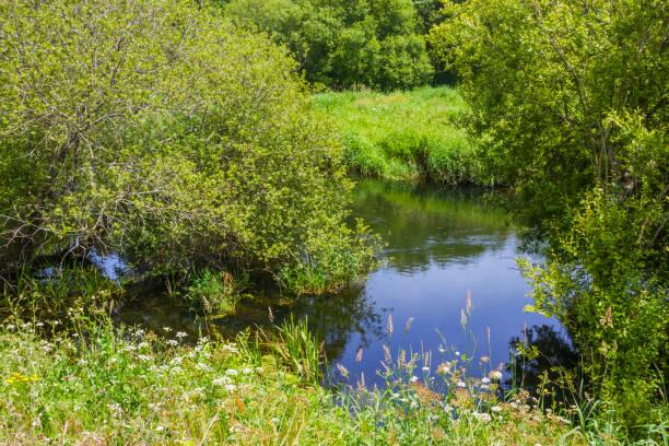 Umia river riverbank stock photo