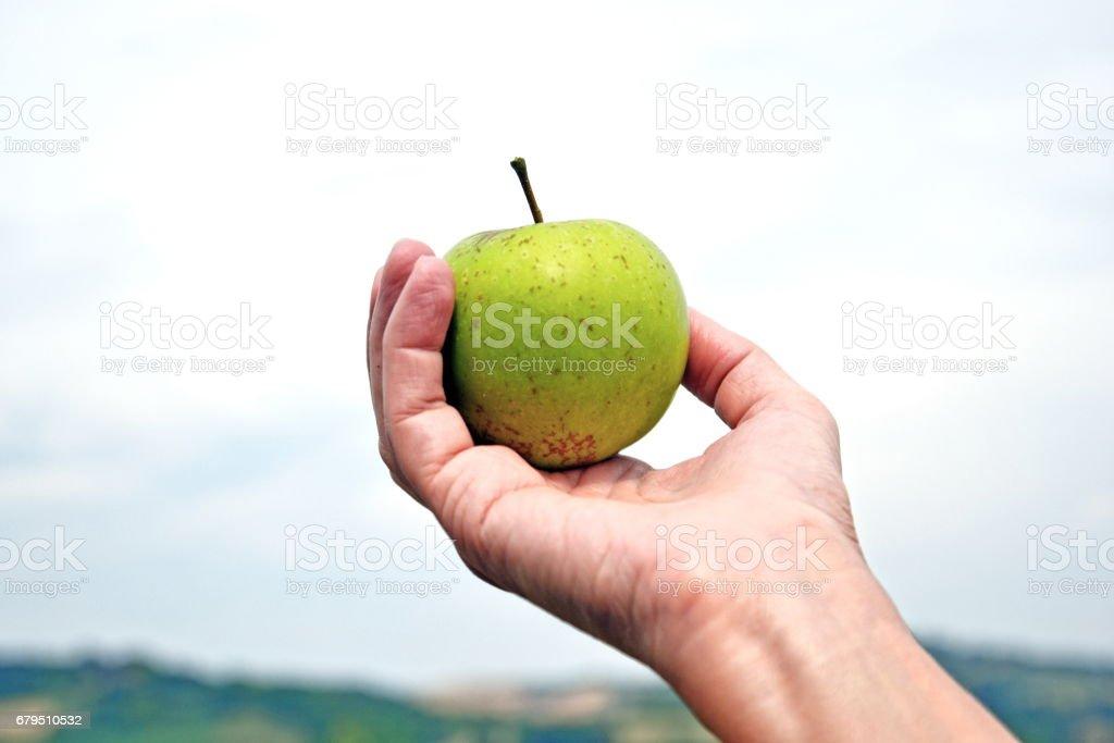 una mela verde in primo piano royalty-free stock photo