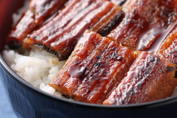 unaju touna bowl - peixe na grelha imagens e fotografias de stock