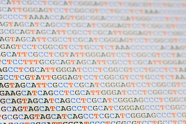 Unaligned DNA sequences letters on LCD screen Photo of unaligned DNA sequences displayed on a computer screen. Shallow depth of focus with sharpest focus towards the lower left hand side of the image. Letters on the right hand side and top are out of focus but still recognisable. nucleotide stock pictures, royalty-free photos & images