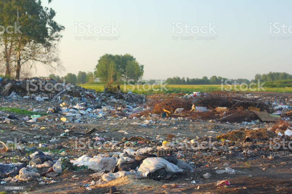 Unauthorized dump of garbage in the nature. Environmental concept.