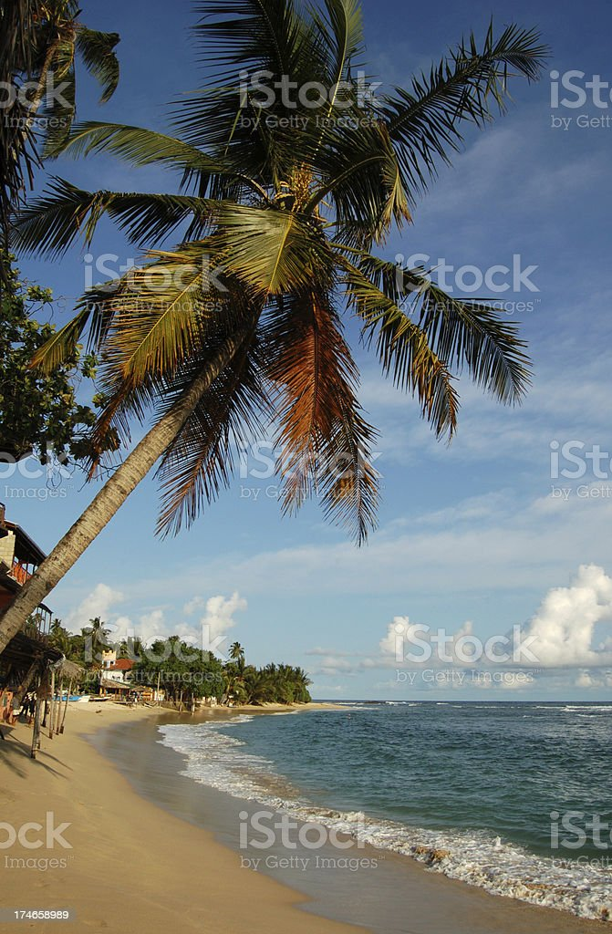 Unawatuna Beach, Sri Lanka royalty-free stock photo