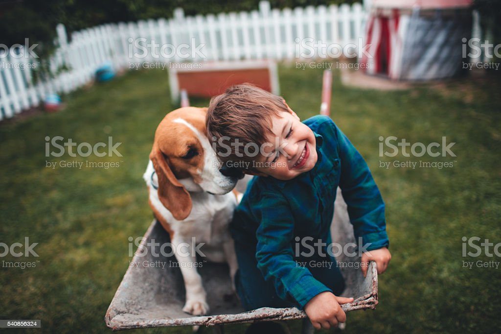 Unconditional love stock photo