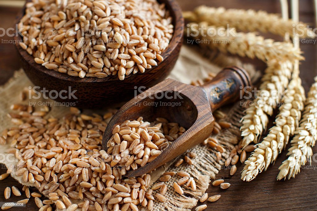 Uncooked whole spelt grain in a bowl with spelt ears stock photo