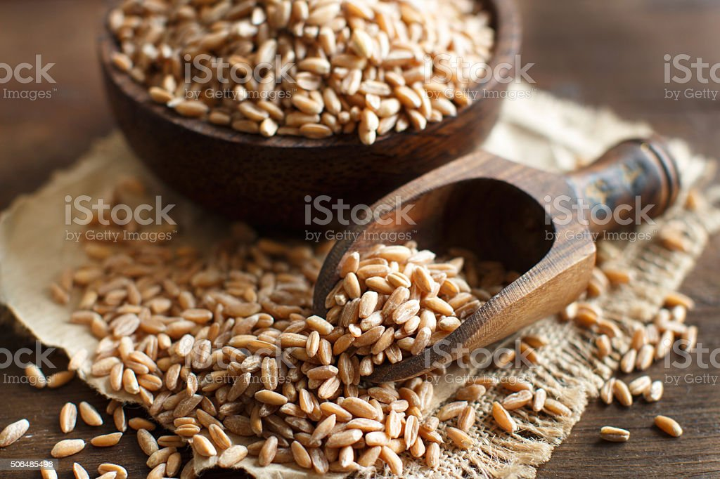 Uncooked whole spelt in a bowl with a wooden spoon stock photo