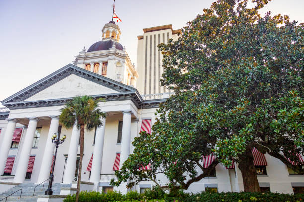Under a clear blue early spring sky, rising above the oak trees, we see the Florida State Capital Buildings with the Historic Capital in the foreground and the high-rise Legislative offices behind it.