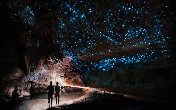 onder een gloed worm hemel-paar schijnt een licht in waipu cave gevuld zal gloeien wormen - grot stockfoto's en -beelden