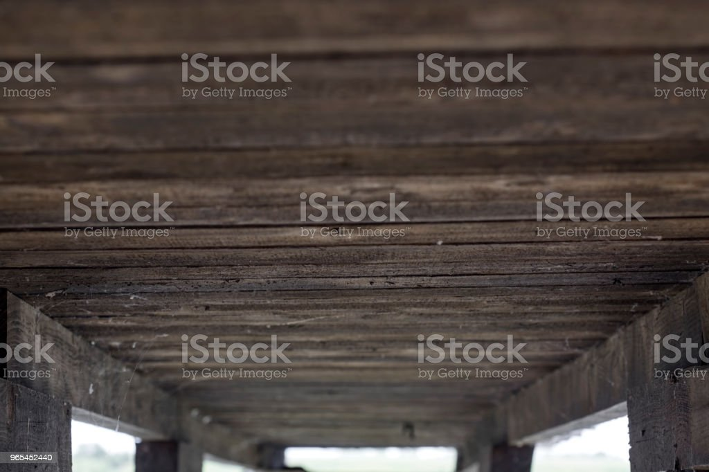 Under an old pontoon on a small lake in Romania royalty-free stock photo