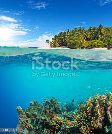 Under and above water surface view of coral reef. Underwater fauna and flora, marine life and exotic island on background