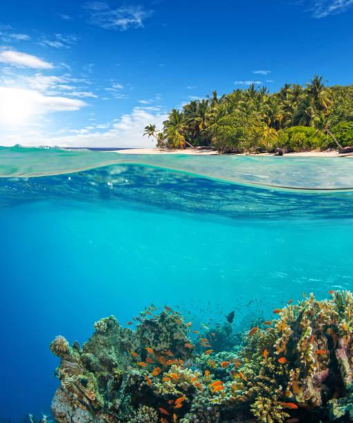 e acima da vista de superfície da água do recife coral - meio cheio - fotografias e filmes do acervo