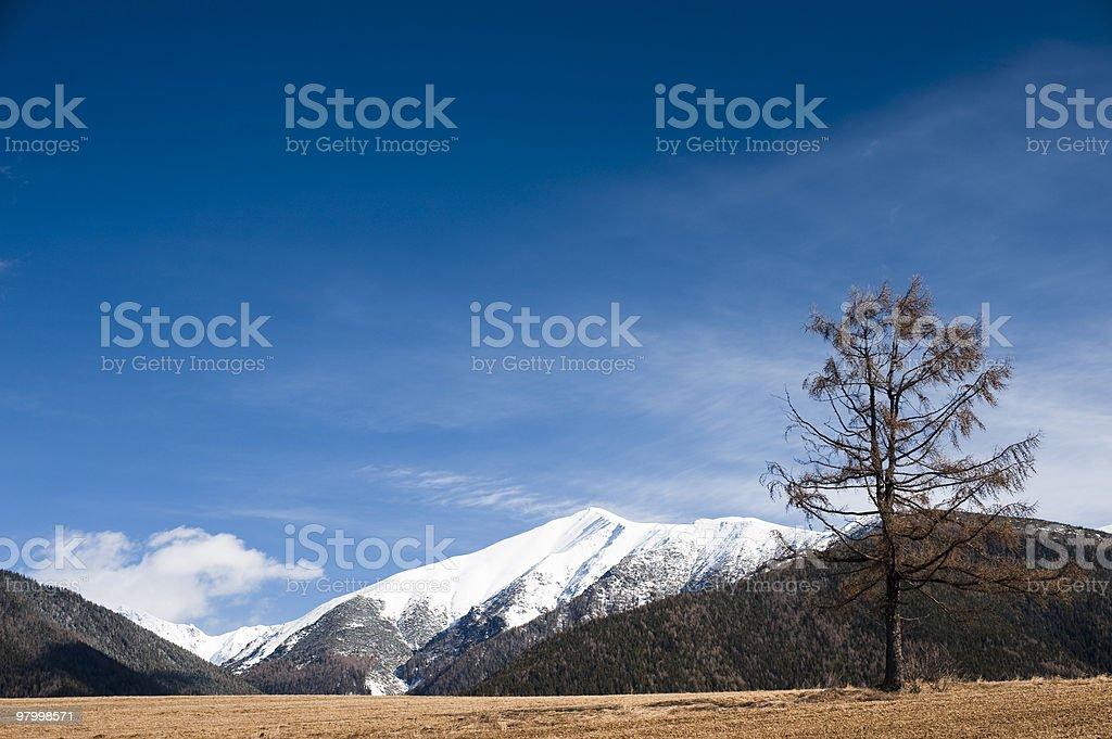 Under mountains royalty-free stock photo