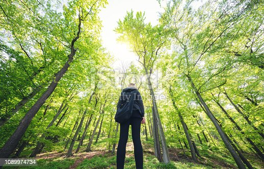 Young woman standing in green forest. View from below.