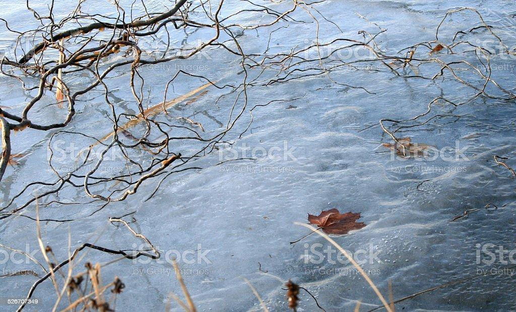 Under the ice stock photo