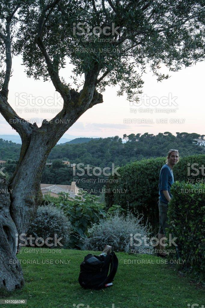 Bajo el olivo en la hora azul - foto de stock