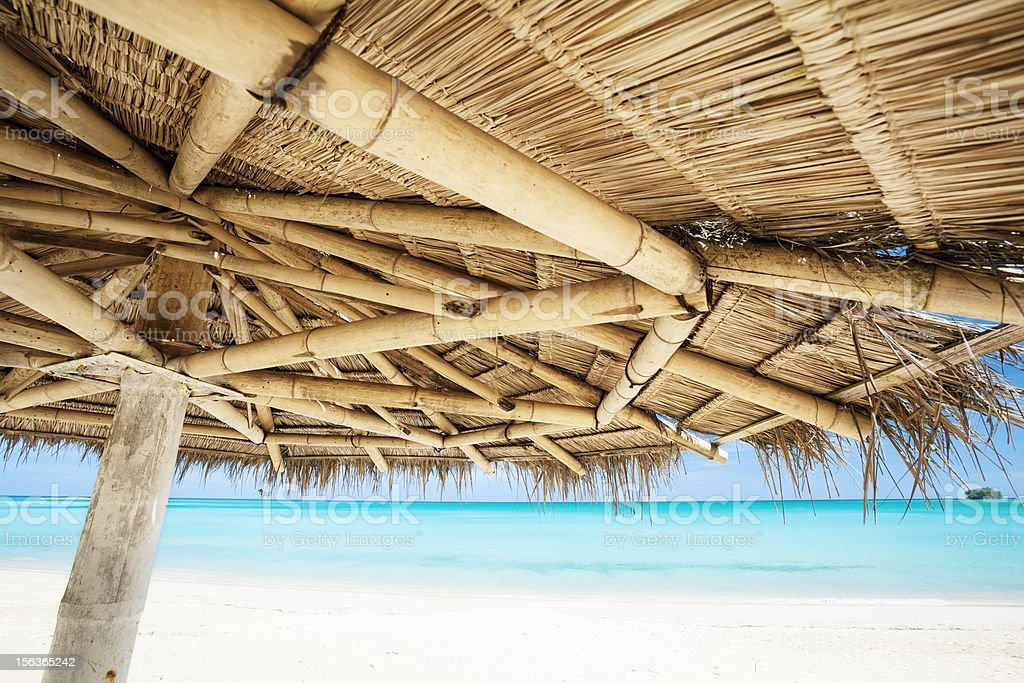 Under the parasol royalty-free stock photo