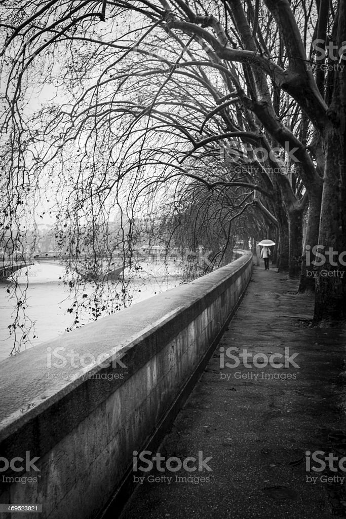 Under the rain royalty-free stock photo