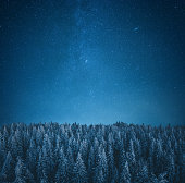 istock Under The Starry Sky 1181315636