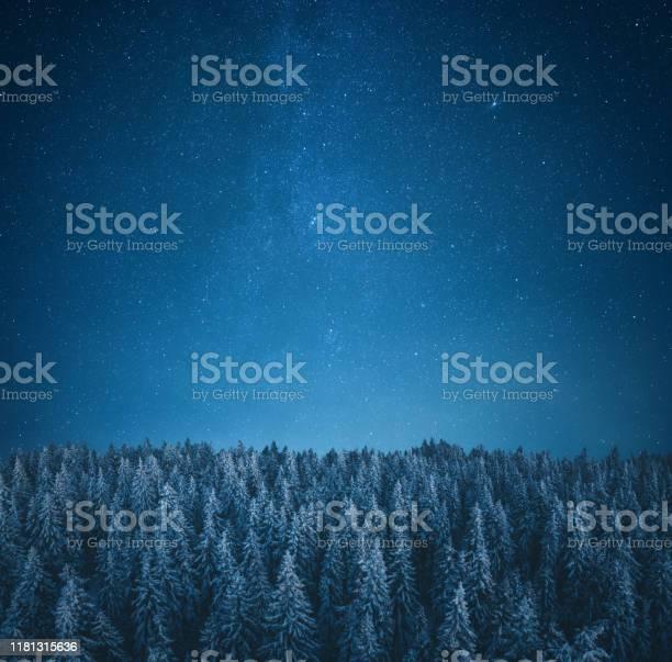 Under the starry sky picture id1181315636?b=1&k=6&m=1181315636&s=612x612&h=x1bdwrqit23lelsr2oueafd amc2kzkwtk8kmttpgd8=