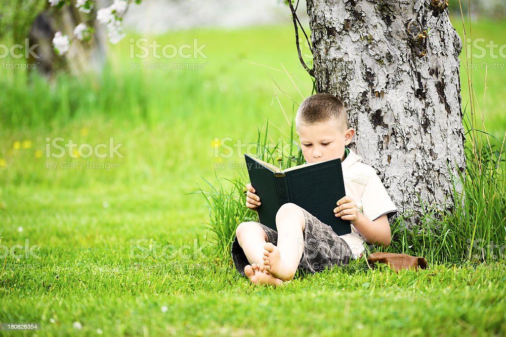 Under the tree royalty-free stock photo