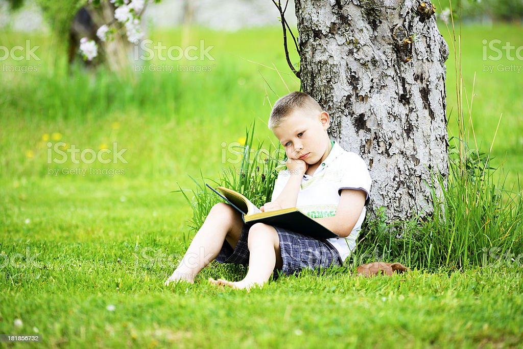 Under the tree. royalty-free stock photo