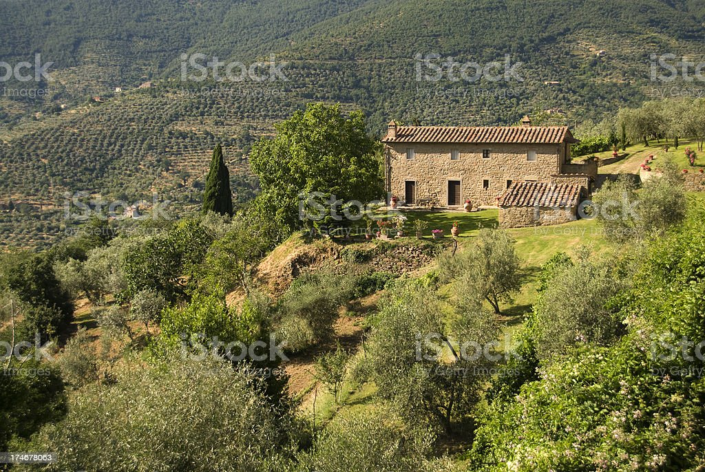 Under the Tuscan sun royalty-free stock photo