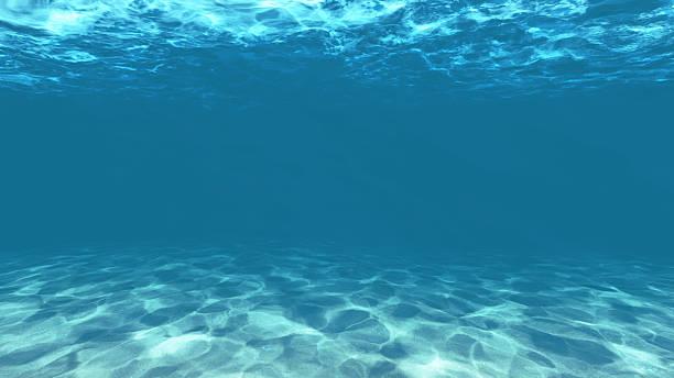 Sous l'eau - Photo