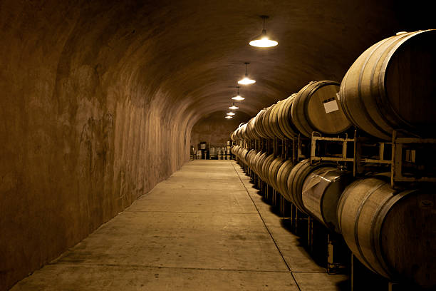 underground dimly lit wine cellar tunnel - dimly stock pictures, royalty-free photos & images