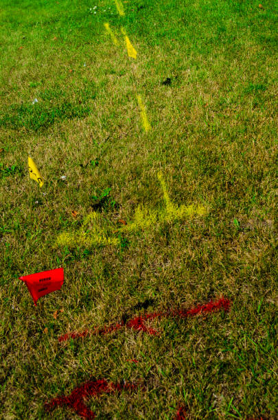 Underground gas utility yellow marking and flag , and red hydro marking and flag on a green lawn stock photo