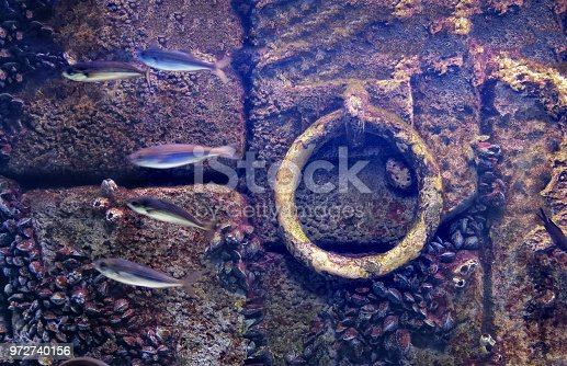 underwater anchor background flooded old dock stone purple wall fishes molluscs attached .