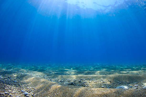 underwater background in sea - ocean floor stock photos and pictures