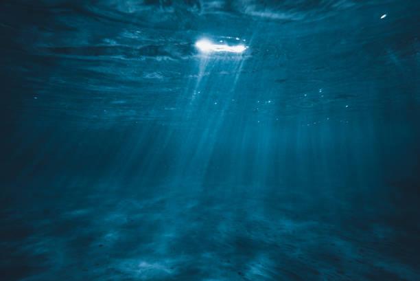 underwater background - ocean floor stock photos and pictures