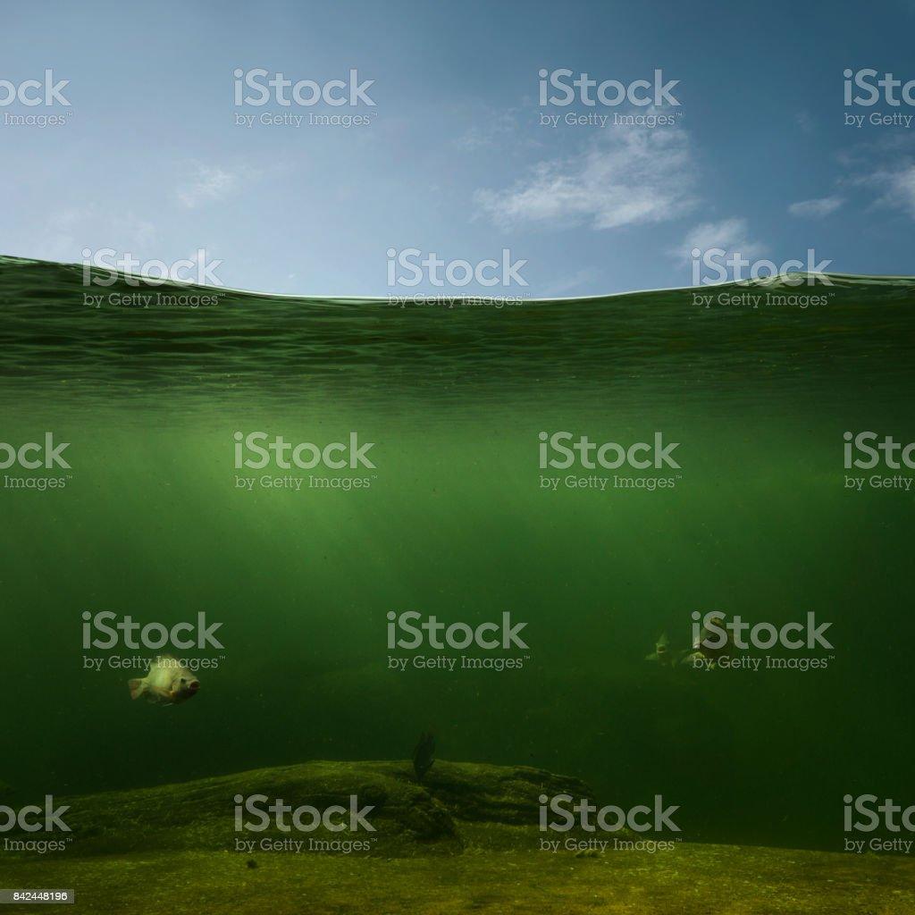 Underwater background stock photo