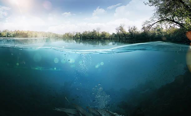 Underwater beautiful lake between the green banks picture id469266958?b=1&k=6&m=469266958&s=612x612&w=0&h=hko1kezkfr6zmbnpji8mroqoanyvk0 u7yu0 ix33dc=