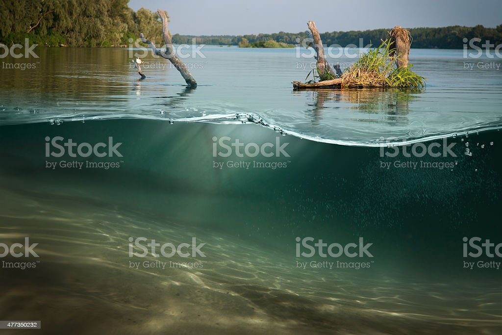 Underwater. Beautiful lake between the green banks stock photo