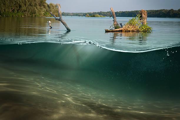 debaixo d'água. belo lago entre as verdes margens - água doce - fotografias e filmes do acervo