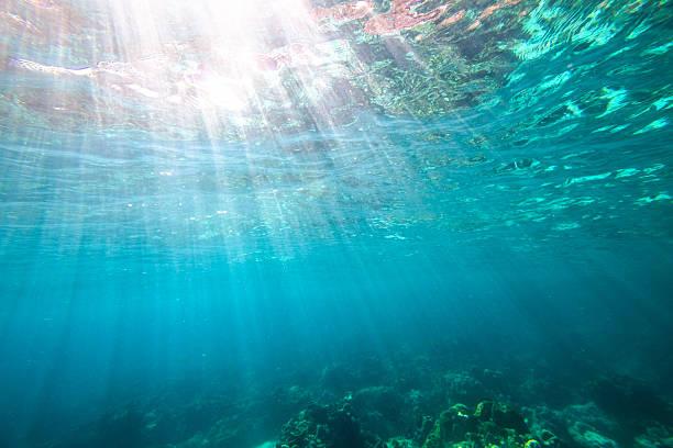 underwater blue background - ocean floor stock photos and pictures