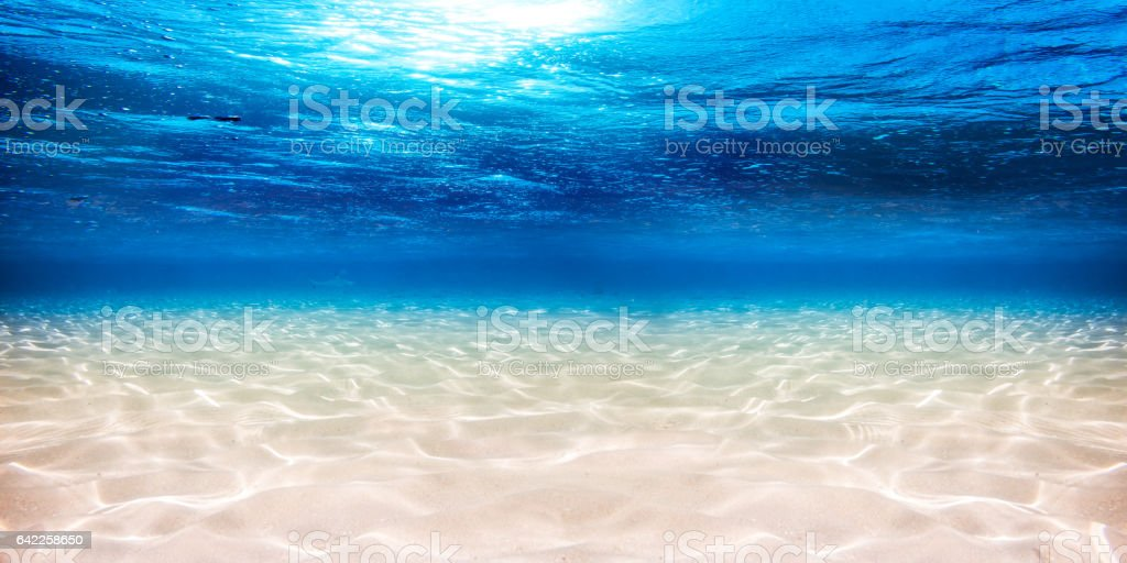 underwater blue ocean sandy background stock photo