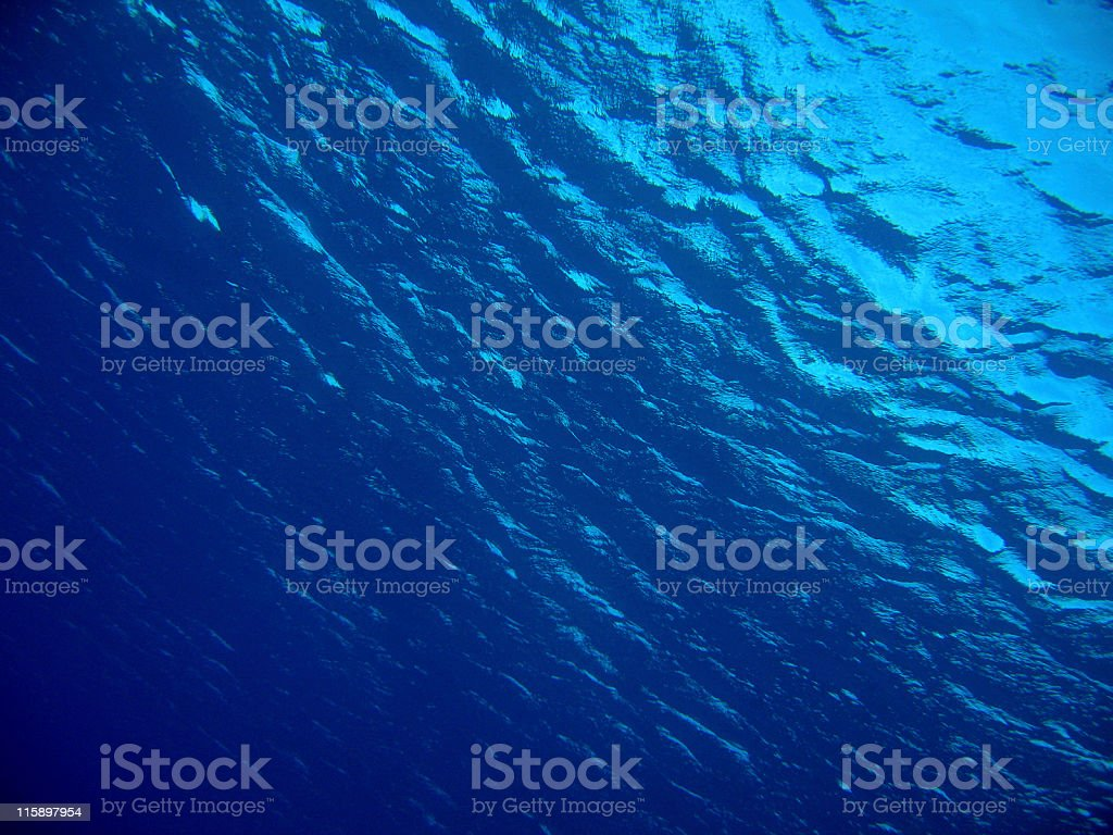 Underwater Dive royalty-free stock photo
