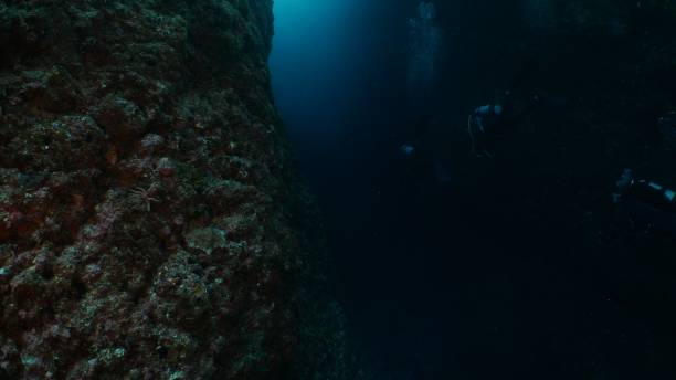 Underwater diving at undersea canyon stock photo